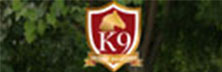K9 Secure Solutions: The One-Stop-Shop for All Your Security Needs
