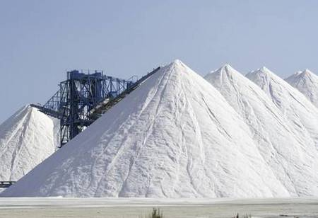 Tata Chemicals to Take Over Archean's Industrial Salt Unit Valued Rs.4.5 Billion