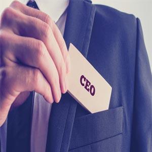 CEOInsights, Team