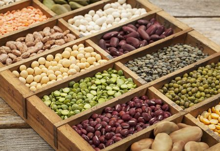 Global Plant Protein Market to Reach $27.9 Billion by 2025