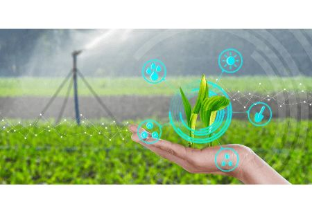 BigHaat Muscles Up its Tech Stack to Provide Real Time Crop Care for Farmers
